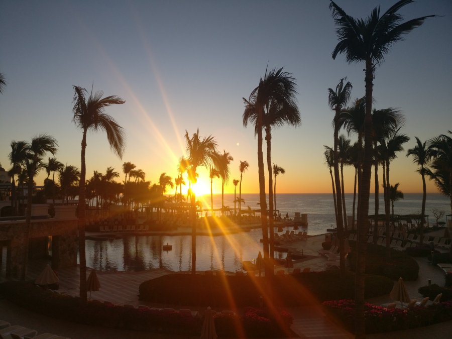 A sunset image of the pool and palm trees at Riu Palace Cabo San Lucas